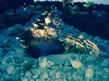 Wish pond
